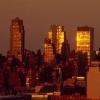 ¿Cuál es el efecto de isla de calor urbano?