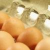 ¿Qué es mejor para comprar, huevos orgánicos o huevos libres de jaulas?