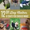 12 de bricolaje ropa y abrigos para perros