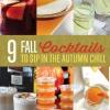 9 Cocktail Recipes caída a emparejarse con los Chill otoño