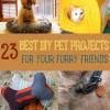 Impresionante bricolaje Proyectos Pet mantener a su peludo Amigos feliz