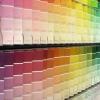 La elección de la pintura interior en color