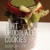 Cookies mezcla en un tarro: Mint Chocolate Chip Cookies