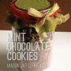 Cookies mezcla en un tarro: Mint Chocolate Chip Cookies