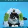 Gato DIY Estación Petting Juguete Auto