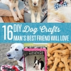 El mejor amigo del perro de DIY Artesanía del hombre Will Love