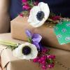 DIY flor fresca Etiquetas para Regalo
