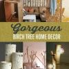 DIY Room Decor: Árboles de abedul Traiga la Naturaleza a tu sala de estar