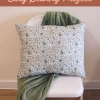 Barrio Fat Throw Pillow