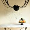 Cinco cosas que se parecen a las arañas