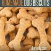 Hecho en casa galletas de perro | Receta e instrucciones