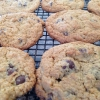 Cómo cocer al horno gluten Chocolate Chip gratuito galletas de avena