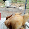 Cómo cocinar un pollo mientras que acampa