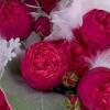 Cómo crear un Acuerdo de San Valentín Rose Garden