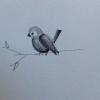 Cómo Cómo dibujar un pájaro simple