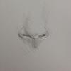 Cómo aprender a dibujar una nariz