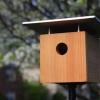 Cómo: Hacer un Birdhouse