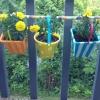 Cómo hacer un barato, lindo Balcón Jardín