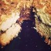 Cómo hacer un pastel de canela Nuez Café