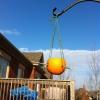 Cómo hacer una Fruta Hanging Bird Feeder