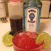 Cómo hacer un Gin Conrad