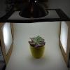 Cómo hacer una caja de luz