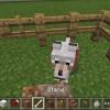 Cómo hacer que un perro real en Mincraft Pe