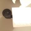 Cómo hacer un soporte de papel higiénico Rústico W / accesorios de tubería