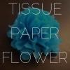 Cómo hacer flores Fuera de crepé o papel de seda