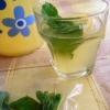 Cómo hacer limonada de jengibre