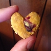 Cómo hacer caseras Cranberry perrito Treats