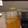 Cómo hacer jalea con jugo de manzana (Simple!)