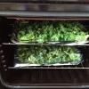 Cómo hacer Kale patatas fritas