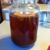 Cómo hacer té de Kombucha