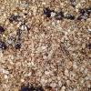 Cómo hacer Granola Nutrición-pic