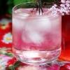 Cómo hacer Pink flor de saúco Cordial