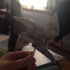 Cómo Mini Pinwheel