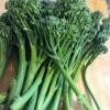 Cómo Saltear bebé Brócoli (Broccolini) con salsa de ostras