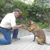 Cómo enseñar a su perro a sacudir las manos