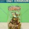 Mason ideas del arte Jar | Cómo hacer un terrario