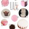 Guía de alimentación Partido napolitana Pastel de Cata