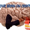 Quieren reducir deterioro cognitivo? Trate de hacer a mano